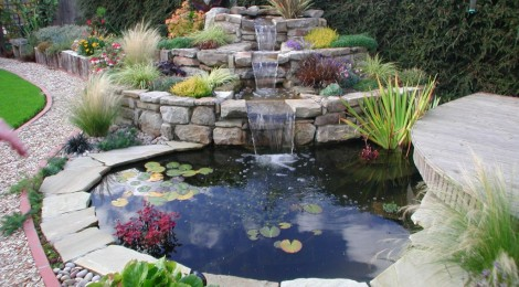 3 great reasons to include a water feature in your garden